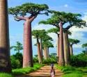 """Южна Африка, Ботсвана, Зимбабве с Водопада 'Виктория"""" и сафари в национален парк Крюгер! Рев на диви  животни и грохот на водопади!"""