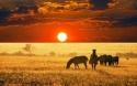 ЮАР – ЗИМБАБВЕ с водопадът Виктория! Рев на диви  животни и грохот на водопади!РАННО ЗАПИСВАНЕ ДО  07.03.2018!